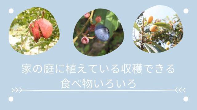 庭に植えてる収穫して食べれるもの