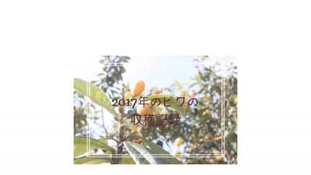 ビワの収穫記録